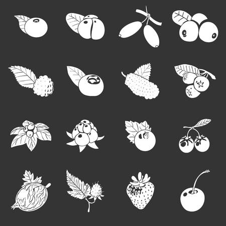 Berries icons set white isolated on grey background Stock Photo