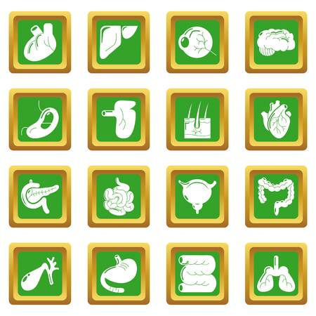 Internal human organs icons set green square isolated on white background Stock Photo