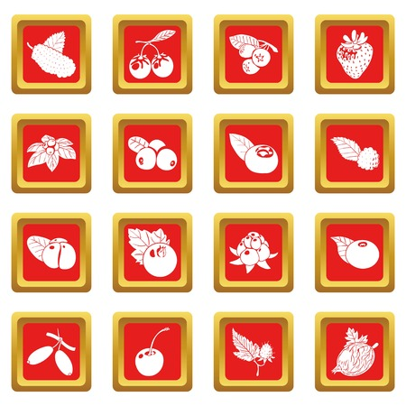 Berries icons set red square isolated on white background