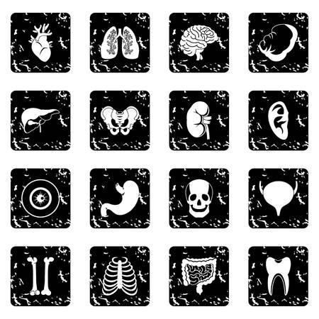 Human organs icons set