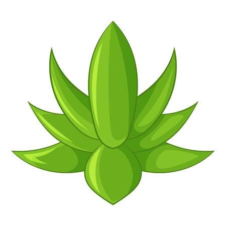 Big agave icon, cartoon style