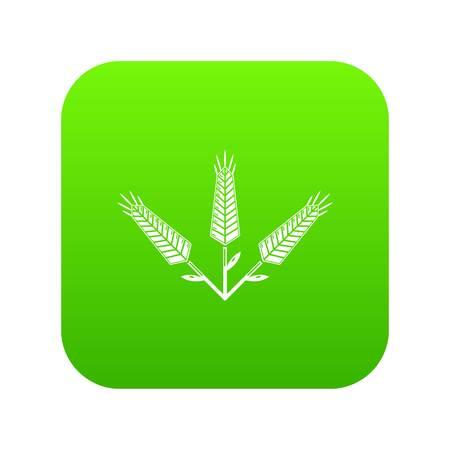 Abundant wheat icon green isolated on white background