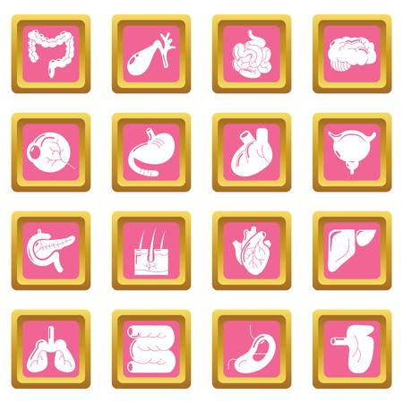 Internal human organs icons set pink square isolated on white background