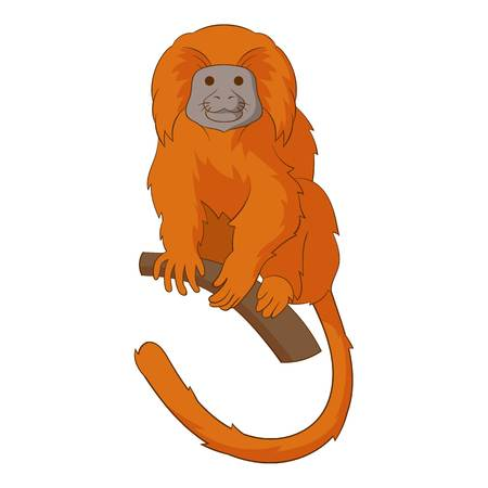 Golden lion tamarin icon. Cartoon illustration of golden lion tamarin icon for web Stok Fotoğraf