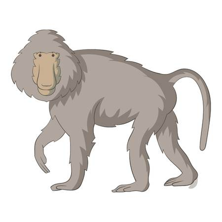 Baboons icon. Cartoon illustration of baboons icon for web