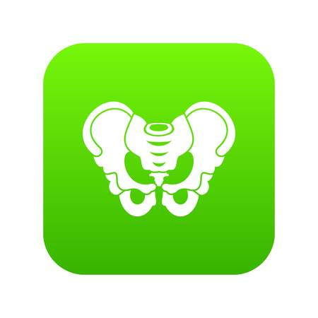 Pelvis icon digital green for any design isolated on white vector illustration