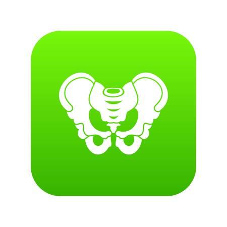 Pelvis icon digital green for any design isolated on white vector illustration Illustration