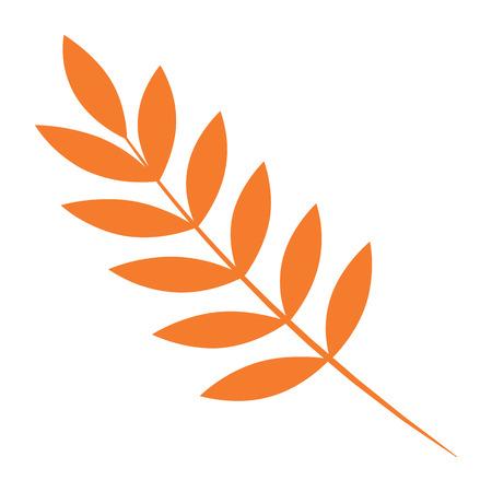 Rowan autumn leaf icon. Flat illustration of rowan autumn leaf vector icon for web design