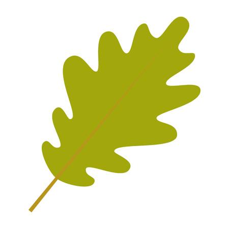 Oak leaf icon. Flat illustration of oak leaf vector icon for web design