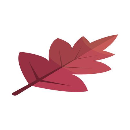 Icono de hoja de árbol rojo Viburnum. Isométrica de viburnum rojo árbol hoja icono vectoriales para diseño web aislado sobre fondo blanco. Ilustración de vector