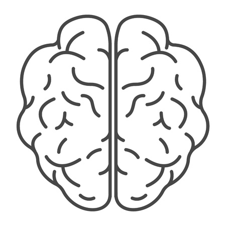 Top view brain icon. Outline top view brain vector icon for web design isolated on white background