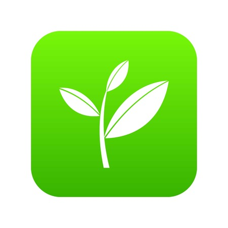 Tea leaf sprout icon digital green for any design isolated on white vector illustration