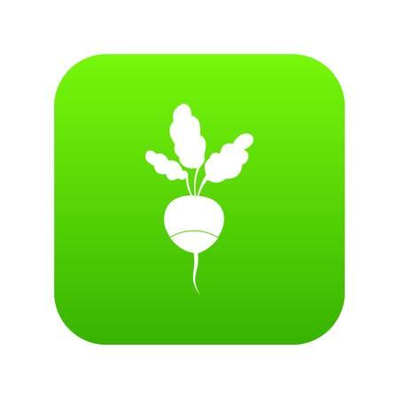 Fresh radish icon digital green