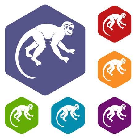 Capuchin monkey icons set hexagon isolated illustration Foto de archivo