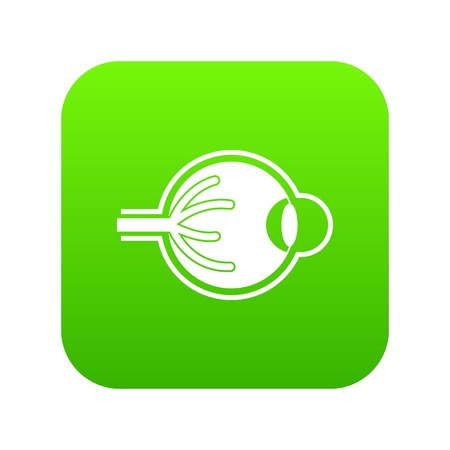 Human eyeball icon digital green for any design isolated on white vector illustration