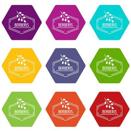 Berberis icons set 9 vector