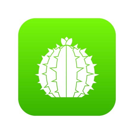 Lophophora cactus icon digital green for any design isolated on white vector illustration 矢量图像