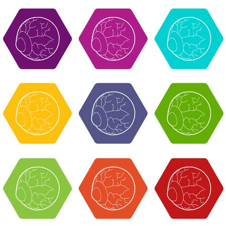 Eye icons 9 set coloful isolated on white for web