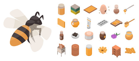 Apiary icon set. Isometric set of apiary vector icons for web design isolated on white background Çizim