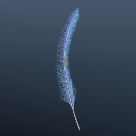 Blue feather icon, realistic style