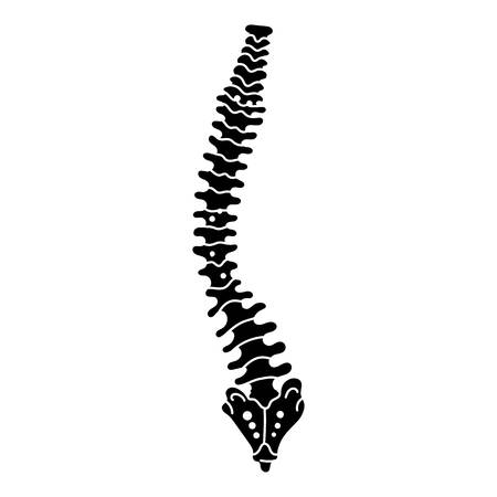 Spine icon. Simple illustration of spine vector icon for web design isolated on white background