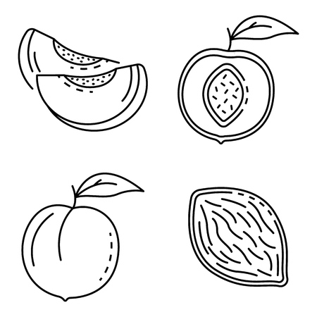 Peach icons set. Outline set of peach vector icons for web design isolated on white background Vector Illustratie