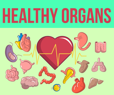 Healthy organs concept banner, cartoon style Иллюстрация