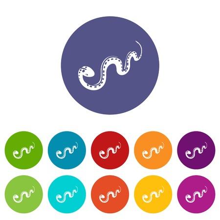 Desert snake icons set vector color