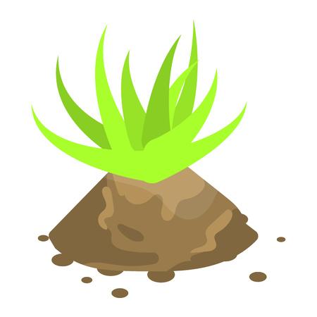 Aloe vera plant icon, isometric style  イラスト・ベクター素材