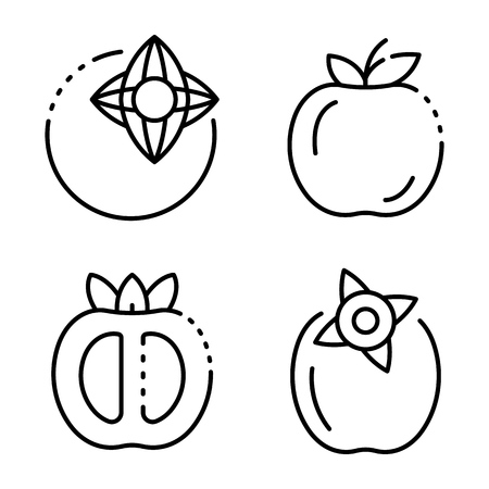 Persimmon icons set, outline style