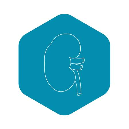 Kidney icon, outline style Illustration