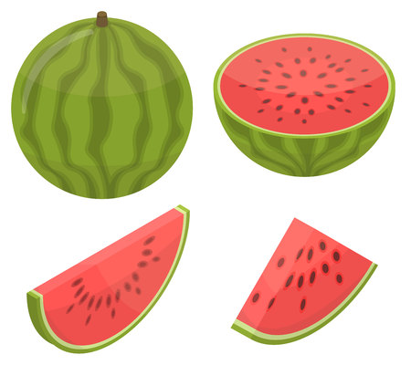 Watermelon icons set. Isometric set of watermelon vector icons for web design isolated on white background