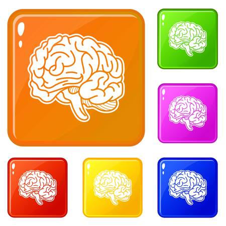 Genius brain icons set vector color Illustration
