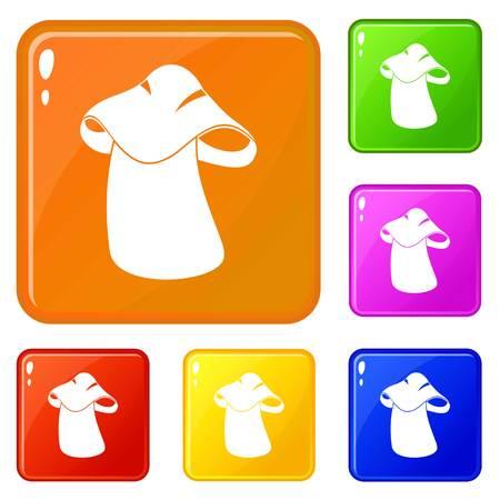 Boletus icons set vector color 向量圖像