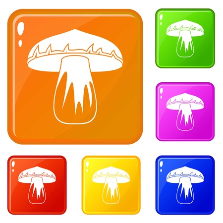 Forest mushroom icons set vector color