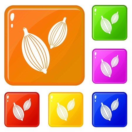 Cardamom pods icons set collection vector 6 color isolated on white background