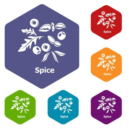Spice icons vector colorful hexahedron set collection isolated on white