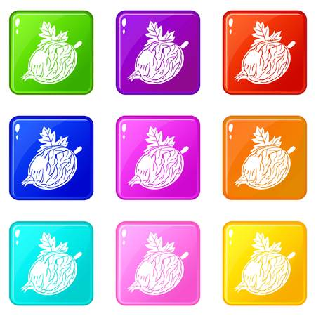 Gooseberry icons set 9 color collection