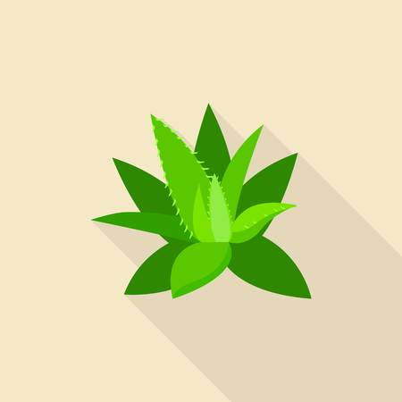 Aloe vera icon, flat style Illustration