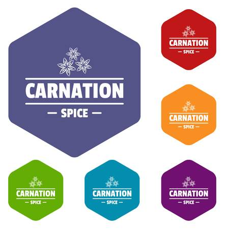 Carnation spice icons vector hexahedron