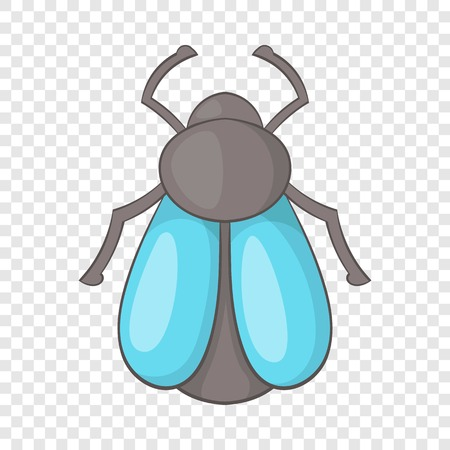 Fly icon. Cartoon illustration of fly vector icon for web