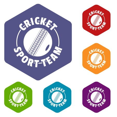 Cricket sport icons vector hexahedron