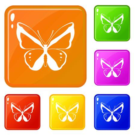 Butterfly icons set vector color
