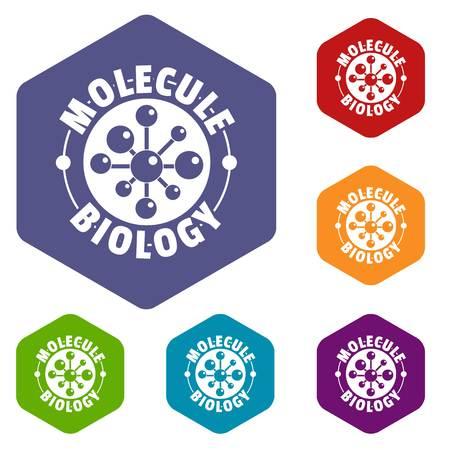 Molecule biology icons vector hexahedron Illustration