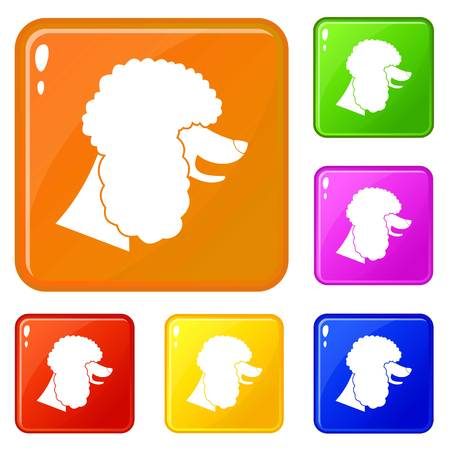 Poodle dog icons set collection vector 6 color isolated on white background