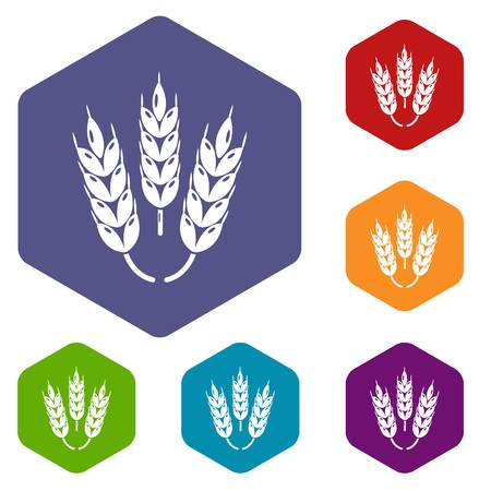 Juicy Wheat icons vector hexahedron