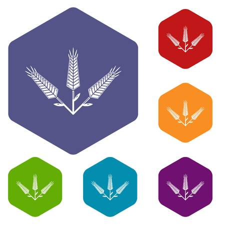 Abundant wheat icons vector hexahedron Ilustração