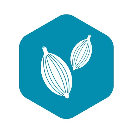 Cardamom pods icon. Simple illustration of cardamom pods vector icon for web