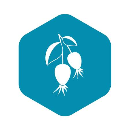 Dogrose berries branch icon. Simple illustration of dogrose berries branch vector icon for web  イラスト・ベクター素材
