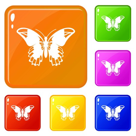 Admiral butterfly icons set vector color